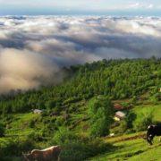 mazichal village iran