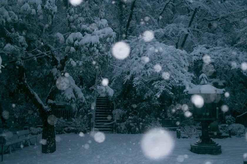 Yalda and Snow