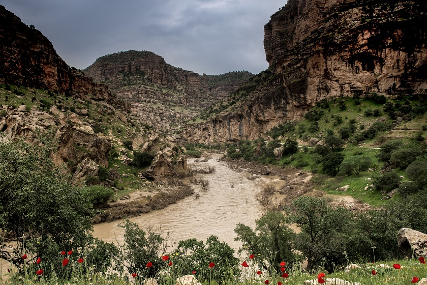 shiraz canyon
