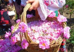 Rose Water Festival in Iran