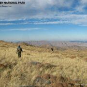 Tandoureh National Park