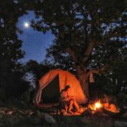 Camping in Iran Wildlife Tours