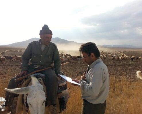 Talking to Herders
